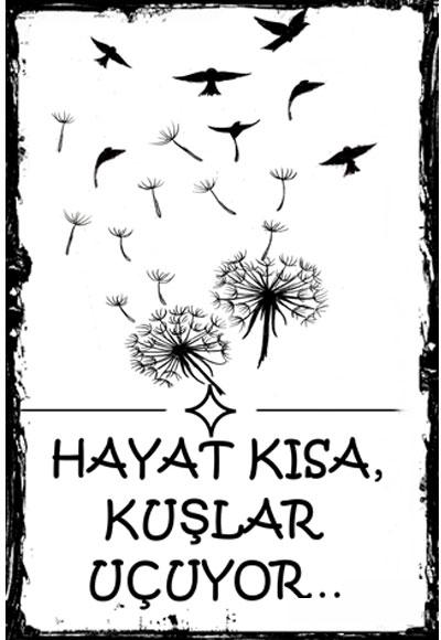 Hayat Kisa Kuslar Ucuyor Poster Melisa Poster 1011111110235