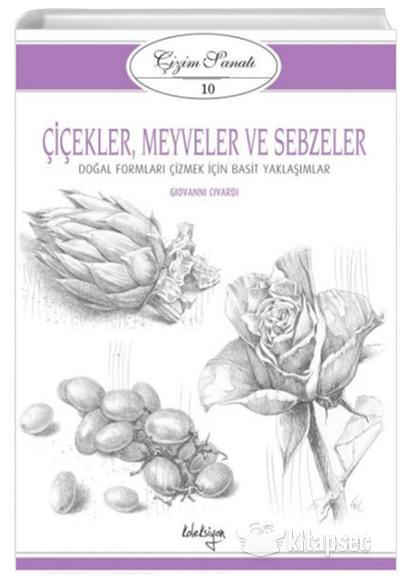 Cicekler Meyveler Ve Sebzeler Cizim Sanati 10 Giovanni Civardi